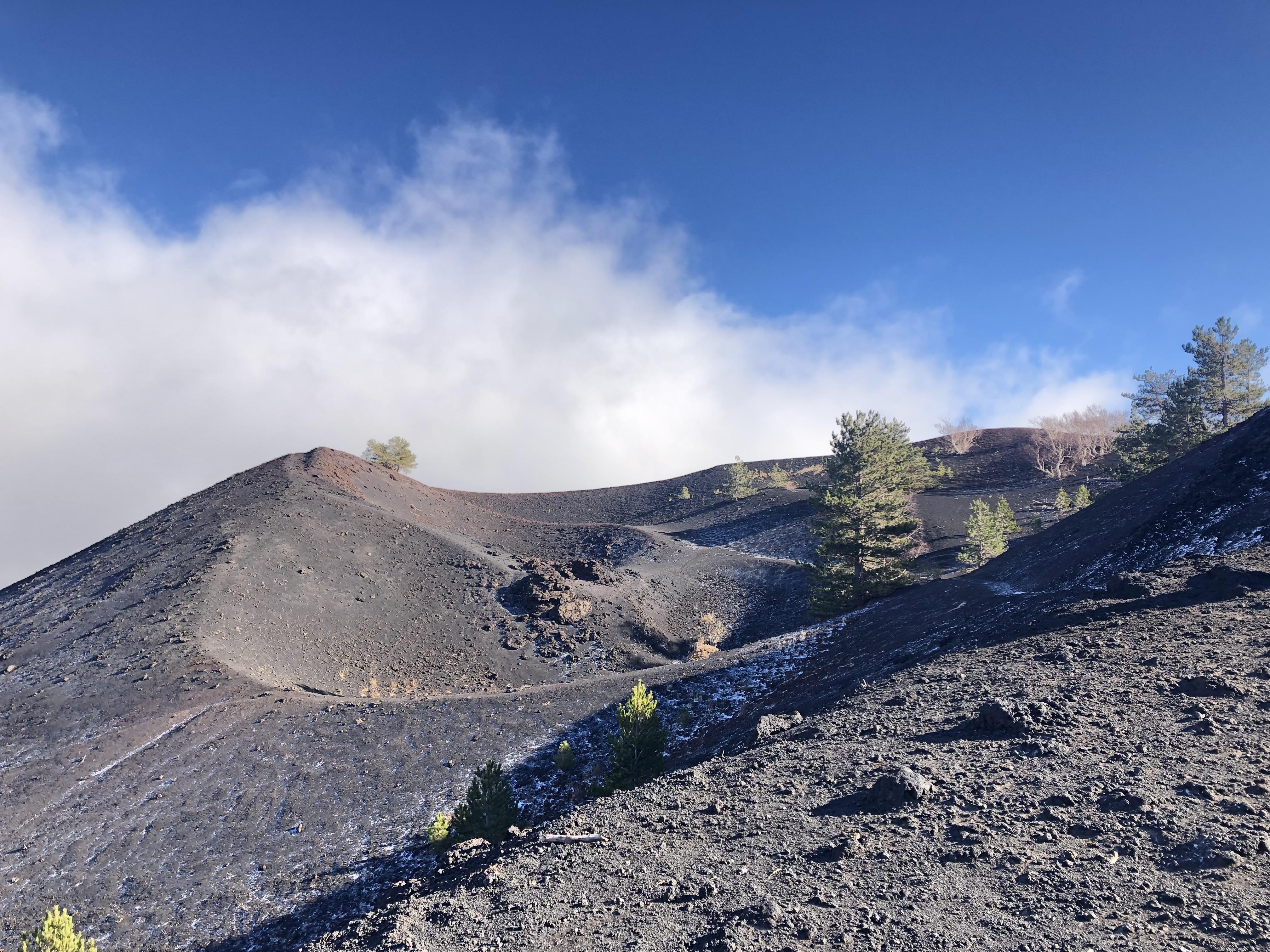etna 2000 mt sartorius