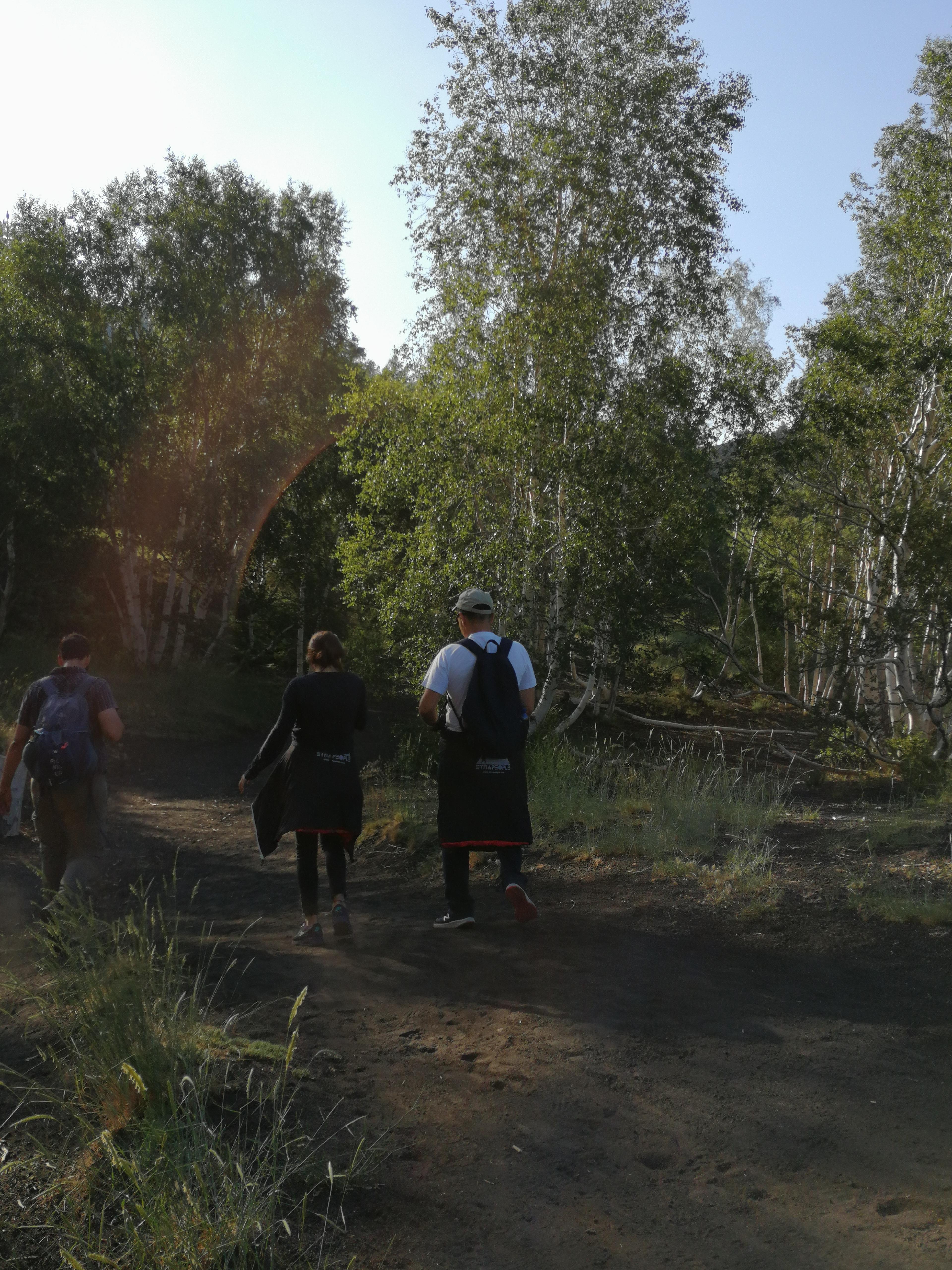 Randonnée dans la végétation de l'Etna