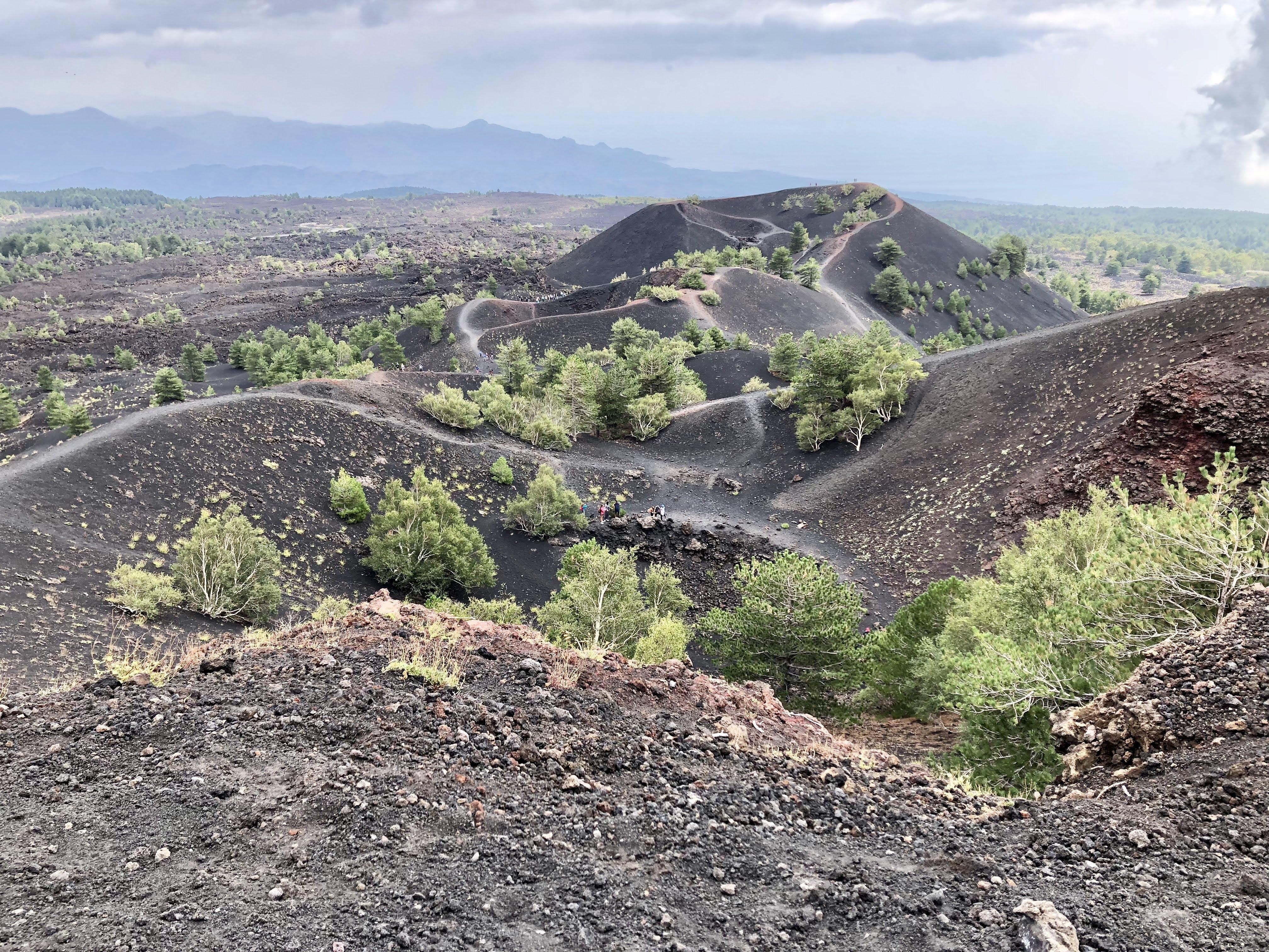 Landscape at 2000 Monti Sartorius