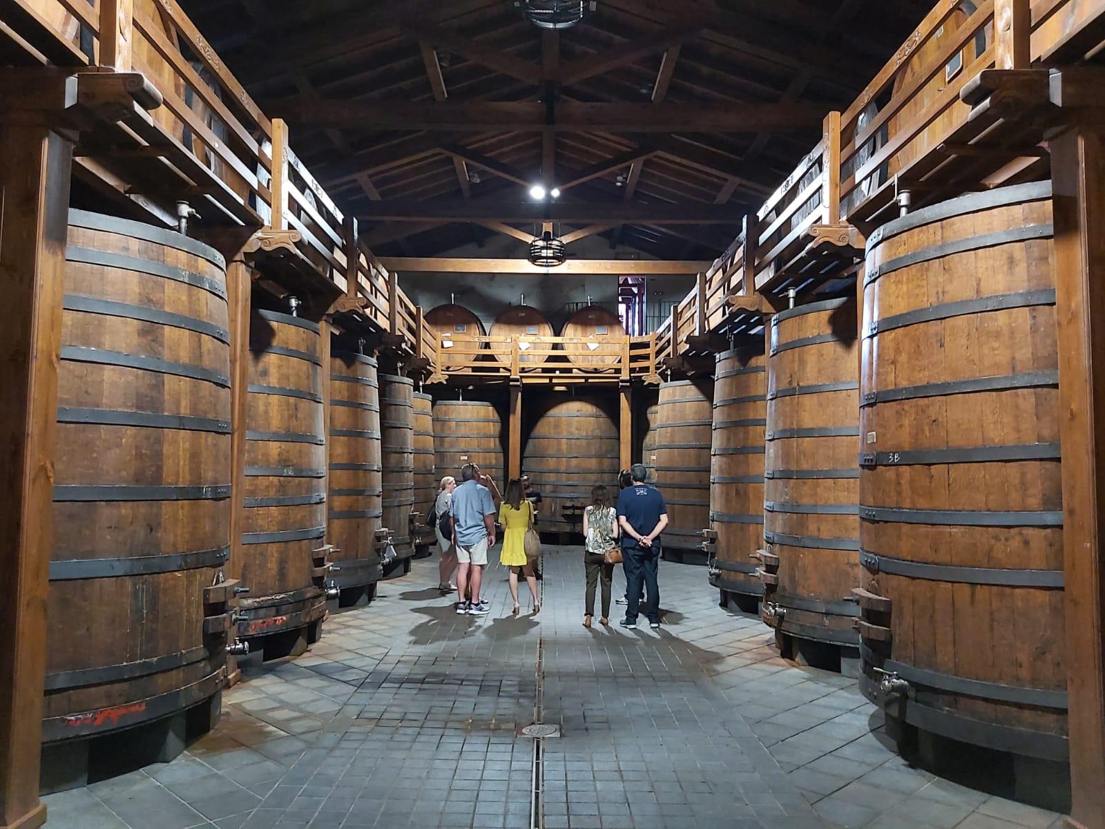 Vin de l'Etna: Dégustation et Visite