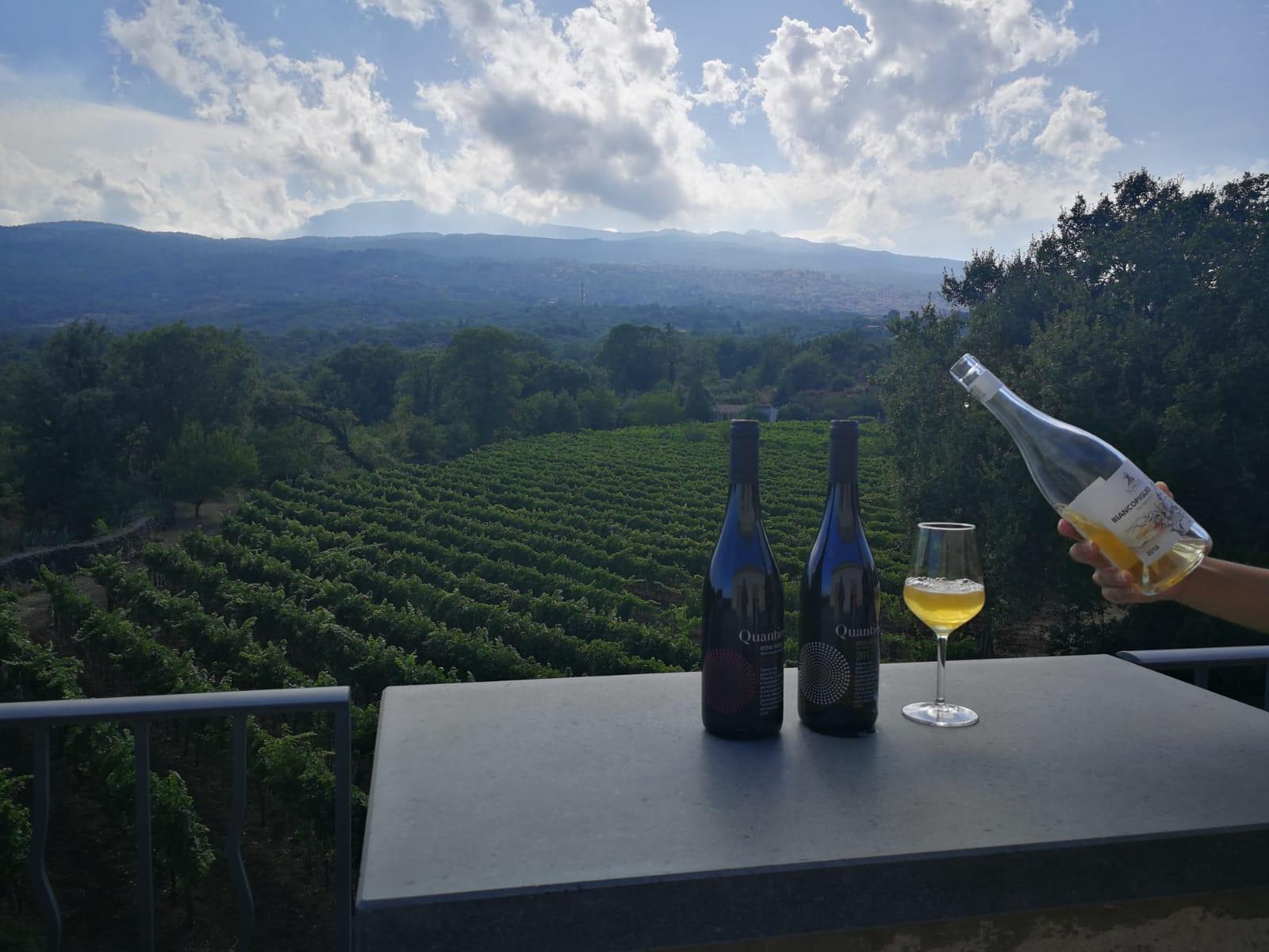 Biancopiglio vino blanco