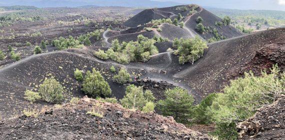 etna half day tour