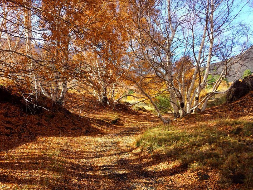 Sicily in Autumn - Mount Etna